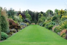 english garden The magnificent native border stretches and looks through to the pond at the end of the canal. Bush Garden, Garden Shrubs, Rain Garden, Garden Pond, Coastal Gardens, Small Gardens, Landscaping Plants, Outdoor Landscaping, Landscaping Design