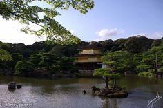 Le Pavillon d'or #Kyoto #Japon