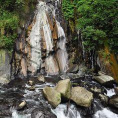 Návštěva horkého pramene Sileng obnáší chůzi pralesem lezení po skalkách za pomoci fixních lan brodění a někdy i krátké plavání. Na konci však čeká skvělý vodopád s horkou vodou. Ideální místo pro podzimní relax v divočině Taiwanu. #tofutaiwantours #tofutaiwan #životnataiwanu #cestování #taiwan  #tchajwan #tchaj-wan #tchajwannenithajsko #taiwanisnotthailand #iseetaiwan #igtaipei #igtaiwan #exploretaiwan #taiwanwalker #biglittleisland #amazingtaiwan #focus_taiwan #台灣 #台北 #horkypramen #priroda