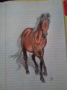 Can't Break Me. - Kaboomz #Horse #ColoredPencil #Colt #SilverDappleBay #OnLinedPaperToo #SchoolSketch #BoredInClass