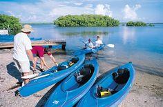 Ding Darling Refuge Kayaks