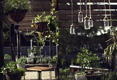 En abril se inauguró en Sydney la cafetería The Grounds.