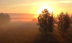 Misty morning by **  REgiNA  **  on 500px