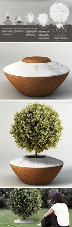 stromová urna