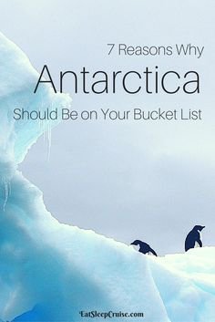 7 Reasons Why Antarctica Should Be On Your Bucket List