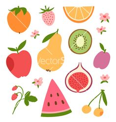 Stylized flat fruits berries and pink flowers vector by stolenpencil on VectorStock®