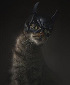 Gotham Kitty by Ruadh DeLone