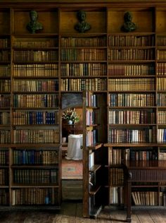 Libraries are places where my soul recharges!