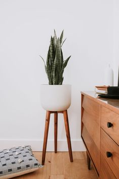 Vera Planter from Nadine Stay Available at Modern bedroom decor with indoor plants Mid century dresser and a mid century inspired white planter with wood legs modernbedroom midcentury homedecor planter indoorplants moderndecor snakeplant Mid Century Modern Living Room, Mid Century Dining, Mid Century Modern Furniture, Rustic Bedroom Design, Modern Bedroom Decor, Modern Decor, Scandinavian Interior Bedroom, Wood Bedroom, Bedroom Plants Decor