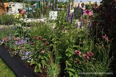 The RHS Kitchen Garden was designed by Juliet Sargeant for the RHS Hampton Court Palace Flower Show This Feature Garden was built by Sandstone Design. Rhs Hampton Court, Shows 2017, Flower Show, Growing Vegetables, Vegetable Garden, Palace, Kitchen, Butterflies, Flowers