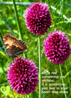 Inspirational words from Mana Gardens Make Me Smile, Dandelion, Gardens, Inspirational, In This Moment, Words, Nature, Flowers, Plants