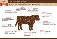 из чего состоит туша говядины и для чего подойдет