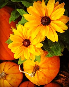 The Feeling of Fall Etsy Shop SmartBlondes Handmade@Amazon/ Shop Smart Blondes