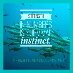 Just a quick note on the importance of a strong network.  It creates the opportunity to strengthen relationships and share best practices.  Reinforce the positive points and share knowledge when receptivity is optimal.  Create mentor relationships and role model opportunities when appropriate.  Become a student and proponent of success principles.