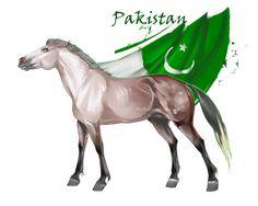 Horse Hetalia:  Pakistan by MUSONART