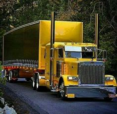 EX HD Peterbilt double bunk flat top sleeper