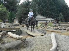Horse Jumps - Training Obstacles