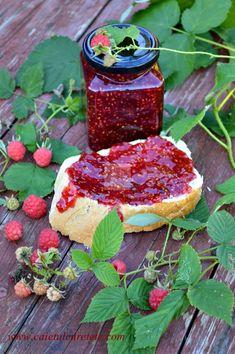 Dulceata de zmeura - CAIETUL CU RETETE Pepperoni, Pizza, Sweets, Gem, Food, Canning, Gummi Candy, Candy, Essen
