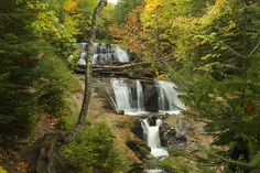 Sable Falls framed for Autumn