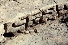 century BC inscription in Georgia may rewrite history of written language Ancient Aliens, Ancient History, Georgia May, Archaeology News, Archaeological Discoveries, Mystery Of History, Ancient Mysteries, History Books, Prehistoric