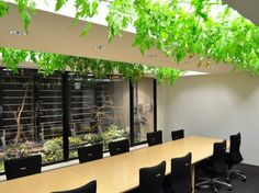 Architizer Blog » Most Delicious Workplace Ever? This Tokyo Office Has Fruit Trees, Tomato Vines, And A Rice Paddy!