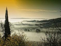 ''Misty Morning'' is a great dawn shot in the hills of south France from www.artography32.com