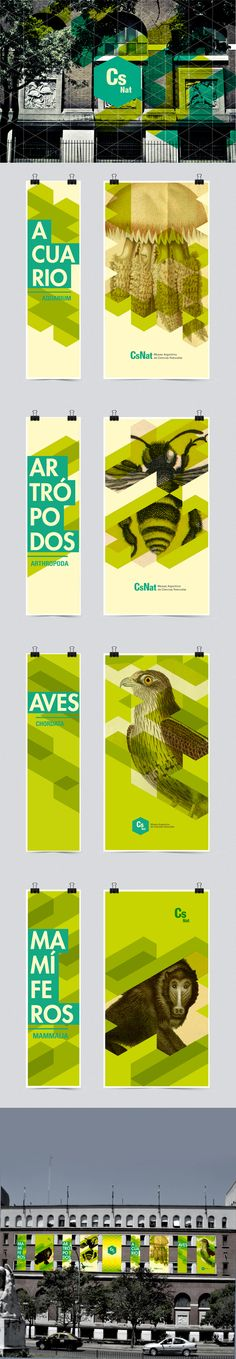 Natural Science Museum of Buenos Aires // #PosterDesign #GraphicDesign #Inspiration