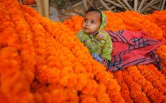The child of a roadside flower vendor plays on a pile of marigold garlands in Allahabad, India,