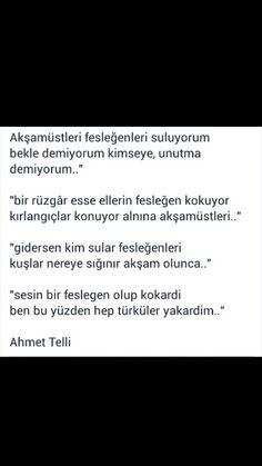 Bir rüzgar esse ellerin fesleğen kokuyor ... Ahmet Telli