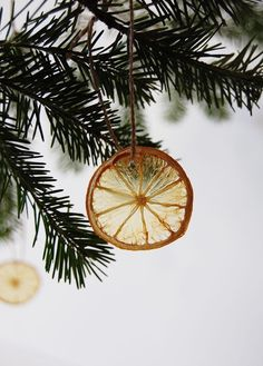 natural christmas tree Dried citrus DIY Christmas ornaments for the tree are an eco-friendly way to decorate! Dehydrated fruit is beautiful, inexpensive, and compostable. Natural Christmas Tree, Pretty Christmas Trees, Easy Christmas Ornaments, Decoration Christmas, Simple Christmas, Handmade Christmas, Diy Christmas Tree Decorations, Ornaments Ideas, House Decorations