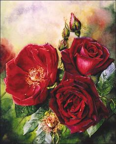 Flowers and Rose Paintings in oil and watercolor :: Watercolor and Oil Painting – Roses, Birds, Still lifes, Figurative Paintings, Watercolor DVDs- Susan Harrison-Tustain Watercolor Rose, Watercolour Painting, Painting & Drawing, Watercolors, Oil Painters, Art Themes, Figure Painting, Botanical Prints, Flower Art