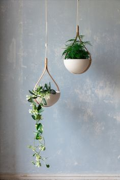 Summon nature inside your home this Spring with our range of handcrafted steam bent wooden planters. A celebration of traditional craftsmanship and functional, modern design. Just add your favourite houseplant. Hang Plants From Ceiling, Ceiling Hanging, Indoor Plant Wall, Indoor Planters, Plant Projects, Wooden Planters, Hanging Flowers, Plant Shelves, Plant Design