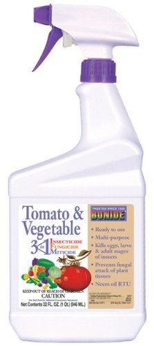 Tomato Vegetable Rx Qt Rtu Model 688 Pack of 12 -- More info could be found at the image url.