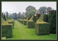 Les jardins du château de Marqueyssac - Dordogne - FRANCE