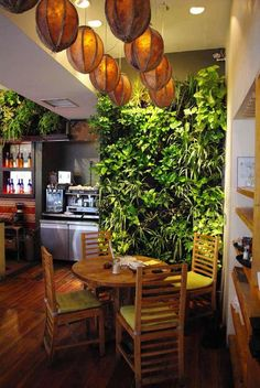 Gustorganics Restaurant / Vertical garden ideas
