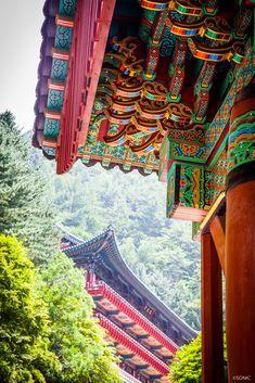 단양 구인사와 사람들....그리고 단청 : 네이버 블로그 Korean Image, Korean Art, Architecture Details, Landscape Architecture, Permaculture Design, Roof Detail, Korean Traditional, Old Building, China Travel