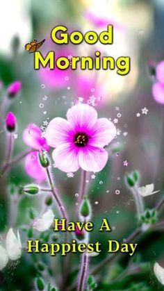 Good Morning Tuesday, Good Morning Msg, Latest Good Morning, Morning Thoughts, Good Morning Coffee, Morning Gif, Good Morning Friends, Good Morning Greetings, Good Morning Bible Quotes