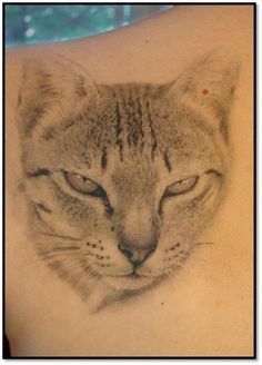 Cat Face Tattoo Picture