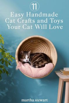 Whether your cat loves to pounce and play, nibble on new treats, or needs a comfy bed for napping (preferably in a sunny spot of the house), we have projects to keep him or her content. Homemade Cat Toys, Diy Cat Toys, Toy Diy, Cool Cat Toys, Dog Toys, Kitten Beds, Cat Hacks, Cat Diys, Cat Playground
