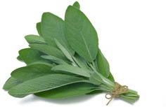 Sage for Hot flashes--Supplements of sage leaves can relieve hot flashes according to a 2016 study. It showed that hot flashes were reduced in a month and in 2 months. Sage teas have also been reported to help reduce menopausal symptoms. Alzheimer's Treatment, Gum Disease Treatment, Sage Herb, Sage Plant, Sage Benefits, Health Benefits, Reverse Receding Gums, Herbal Remedies, Home Remedies