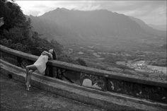 Ballerina Project by Dane Shitagi.   I love this photographer!