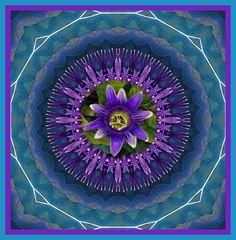 | Compassion Flower Mandala | memyselfandela