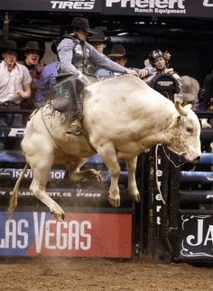 Check out the vertical on that bull!  Bonner Bolton rides Great White during the Winstar World Casino Invitational PBR event at the Chesapeake Energy Arena in Oklahoma City, Sunday, Feb. 12, 2012. Photo by Sarah Phipps, The Oklahoman