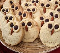 owl cookies for L's class?