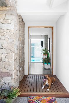 "A Suburban Perth House Design Inspired By A Bali Villa ""This house feels like a sanctuary,"" says owner Kristie, who opens her front door to a view straight through to the pool. Izzy the boxer is on hand with a tail-wagging welcome. Exterior Doors, House Design, House Entrance, Front Entrances, Stone Feature Wall, Stone Cladding, House Front Door, Beach House Design, House Front"