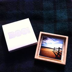 @culverlake photo in Lion color Boo Box by Hatchcraft.com