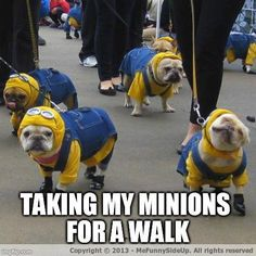 Walking The Minions Meme | Slapcaption.com