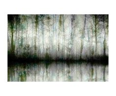 Impression sur toile WISPY TREES III bois, multicolore - 152*101 | Westwing Home & Living