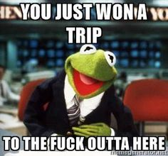 you just won a trip to the fuck outta here - Breaking News Kermit - Fun - Humor bilder Funny Shit, Haha Funny, Funny Stuff, Freaking Hilarious, Seriously Funny, Diy Funny, Funny Gifts, Diabolik, Memes Humor