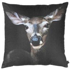 ByNord Deer CloseUp tyyny - Designbox